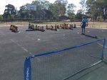 Sports Court - Tennis Lessons.jpg